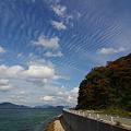 Photos: 秋晴れ