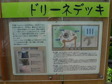 平尾台自然の郷(4)