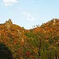 写真: 一目八景~見晴らし台への登山道(5)