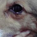 Photos: 2011013011290000