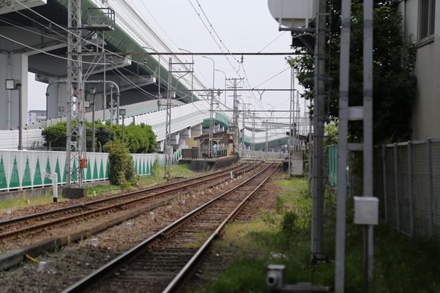 大阪の真ん中で。