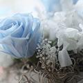 母の日の薔薇 プリザーブドフラワー♪