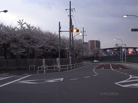 南千住の桜 2010-4-3 11
