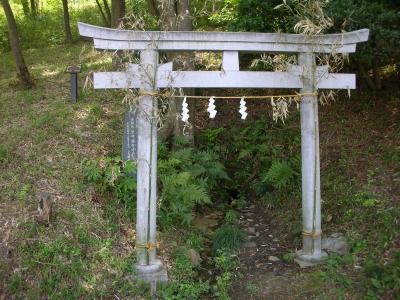 写真: 可愛い神社