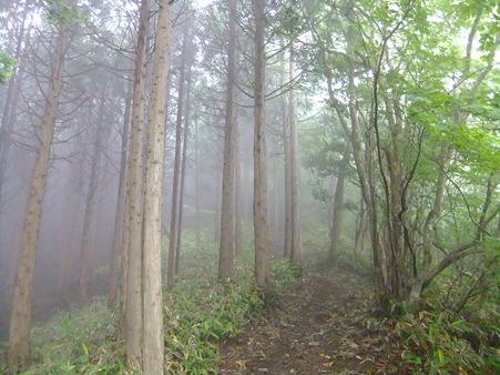 霧の中の登山道