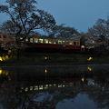 写真: 小湊鉄道の桜 2010 12
