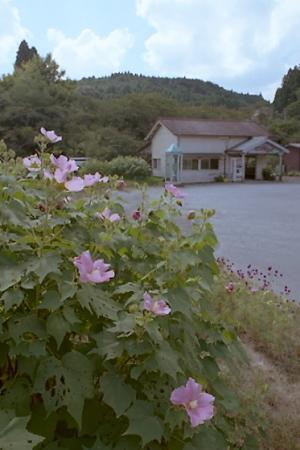秋の小湊鉄道2010 04